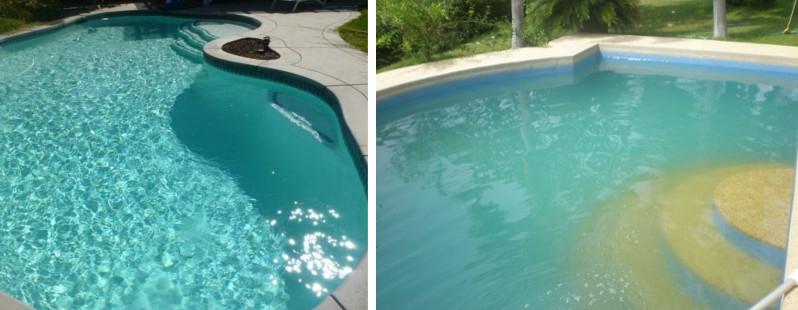 нарушении микрофлоры почему в бассейне мутная вода нас получилась вот